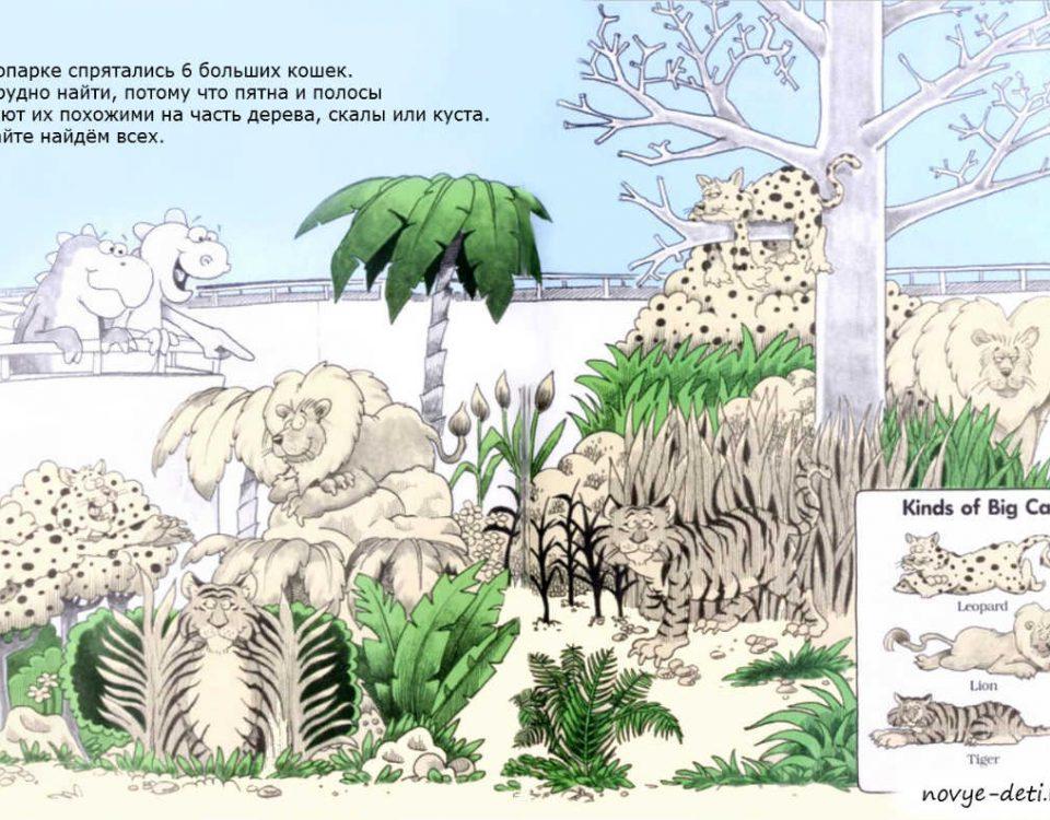 задание на внимание для детей Зоопарк
