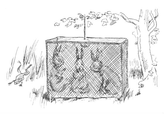 сказкотерапия сказки для детей