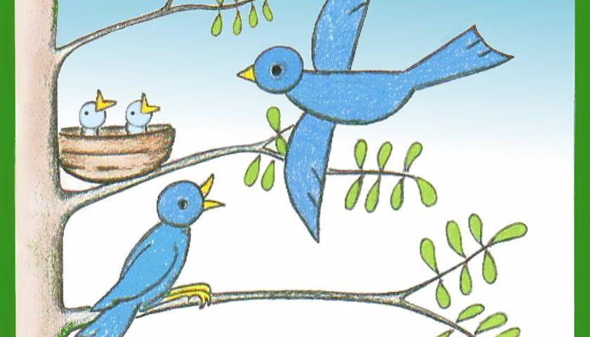 простой урок рисования нарисовать птицу поэтапно