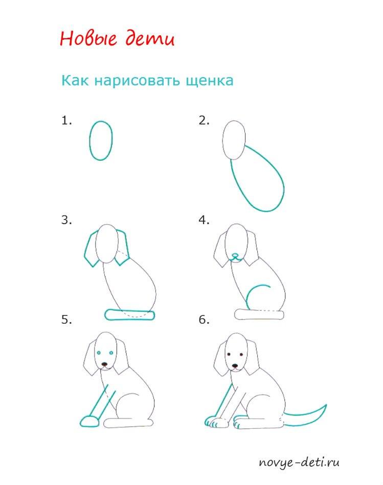 как нарисовать щенка детям