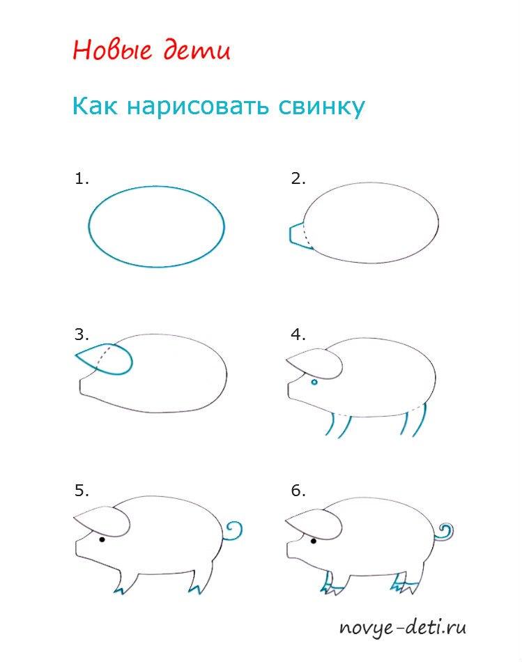 как нарисовать свинку детям 4 5 лет