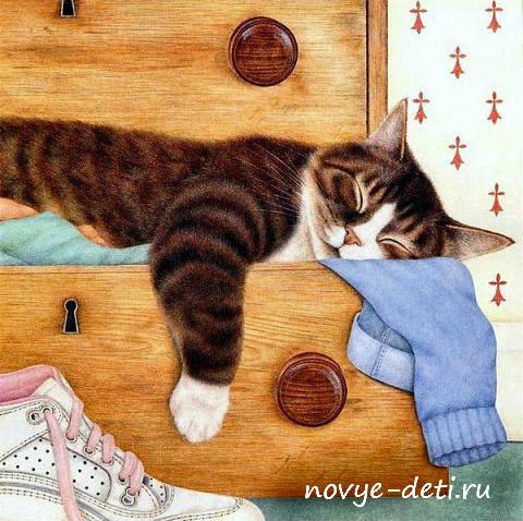 стихи про кошек и котов