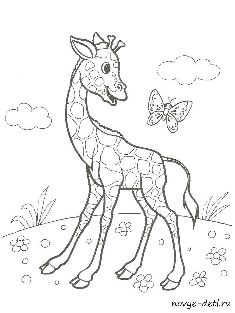 раскраска для детей жираф животные