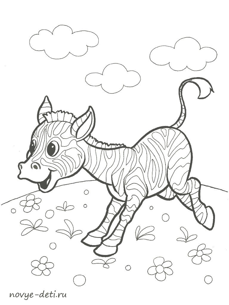 раскраска зебра животные