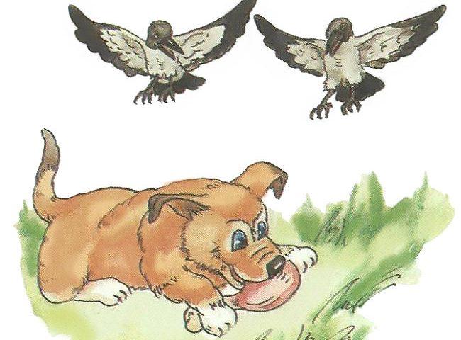 собака ворона рассказ по серии картинок