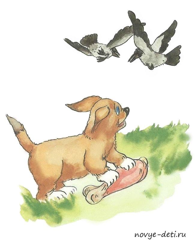 собака ворона составить рассказ