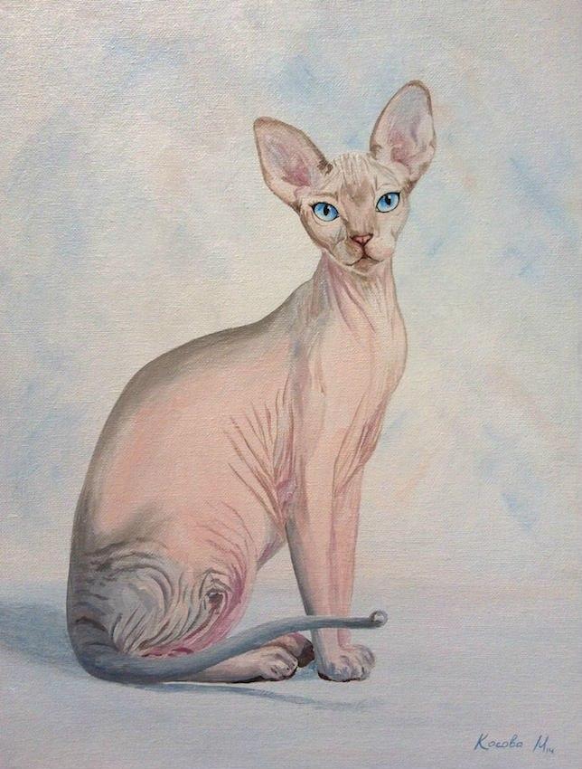 голая кошка сфинкс картина