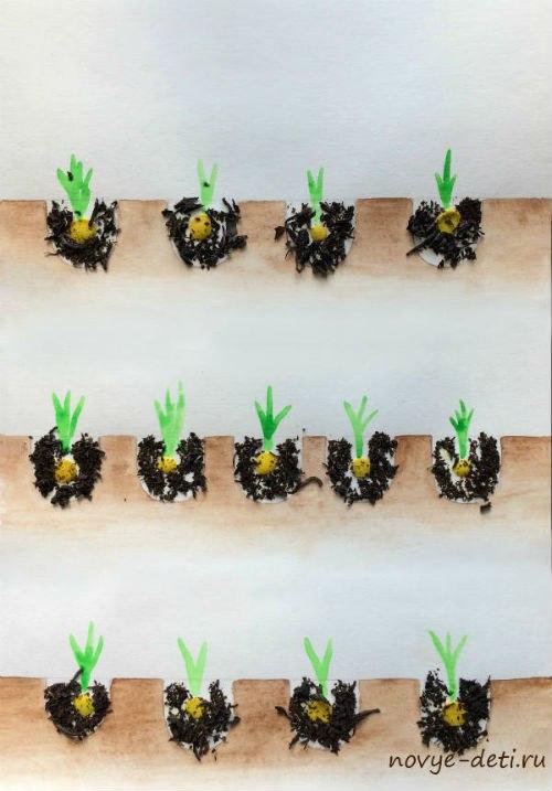 как растут растения развивающее занятие