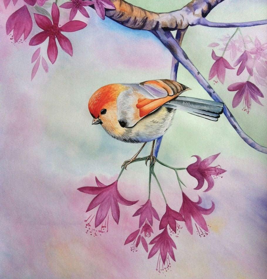 птица акварель розовый картина в детскую