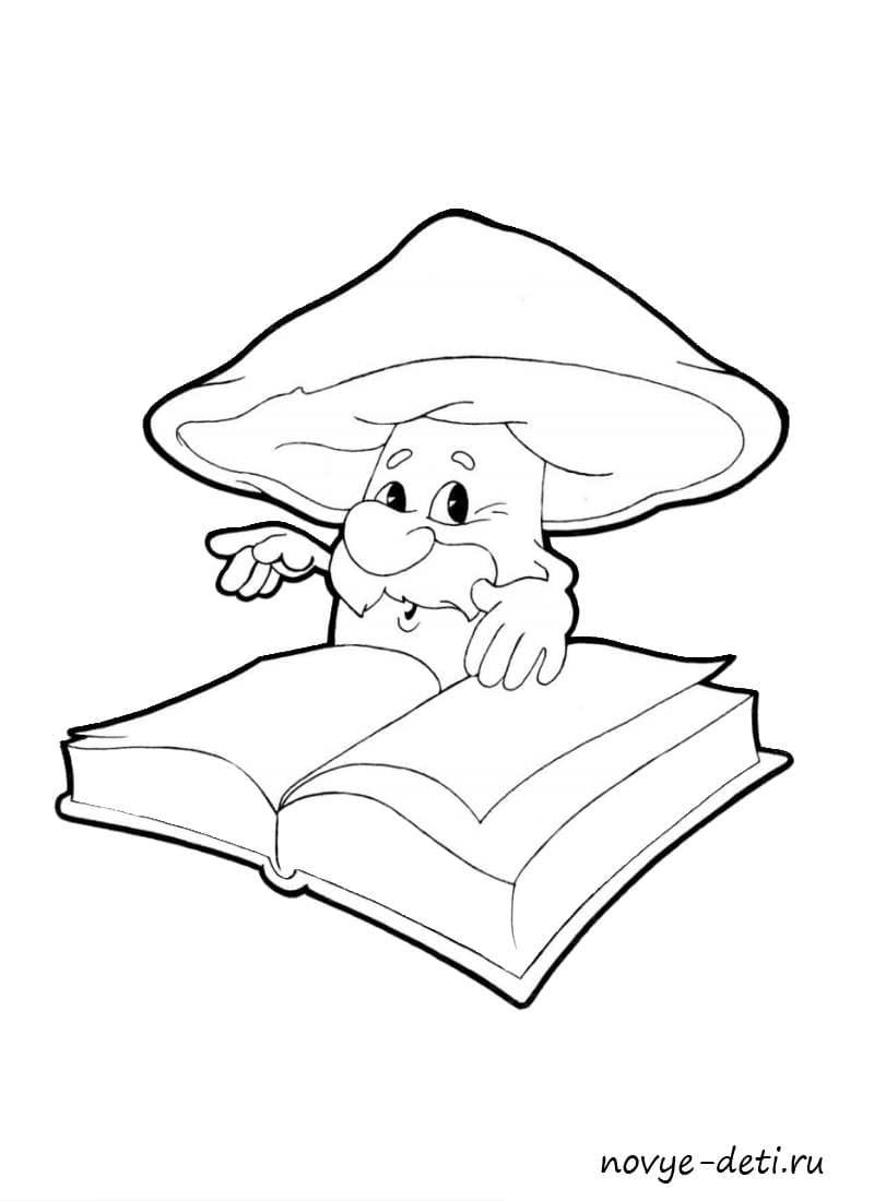 сказочный гриб боровик раскраска