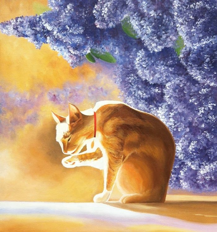 кот солнце сирень картина маслом