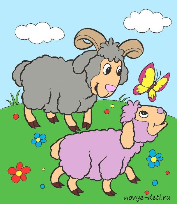 овечки раскраска для детей с образцом