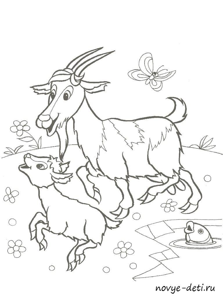 раскраска детская домашние животные козочки