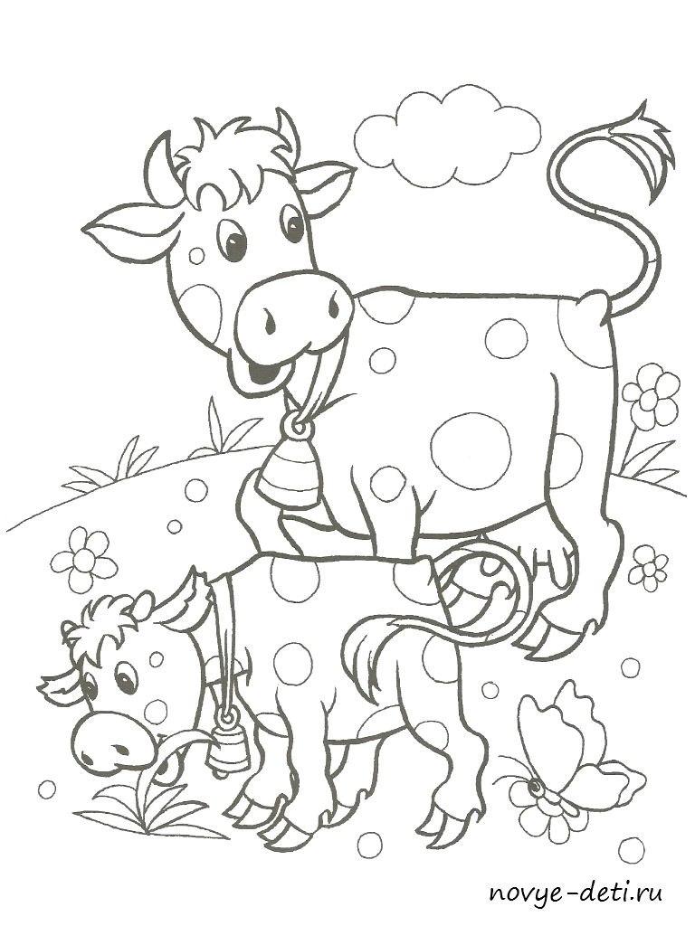 раскраска домашние животные корова теленок