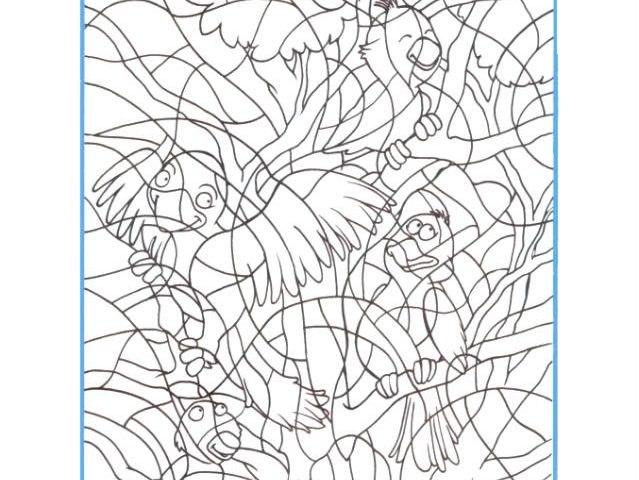 задание на внимание для детей посчитай птиц