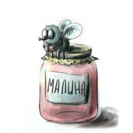 детские стихи кто съел варенье муха